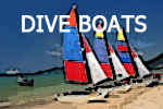 Dive Boat for sale - Key West Dive Charter Business For Sale