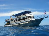 Dive Boat for sale - Daytrip Diveboat for Charter, or Sale on best offer!