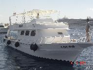 Dive Boat for sale - New Daily Diving Boat for sale or licence South Sinai for sale