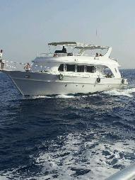 "Dive Boat for sale -  ""Red Sea Boat"" Fleet Company for Sale"