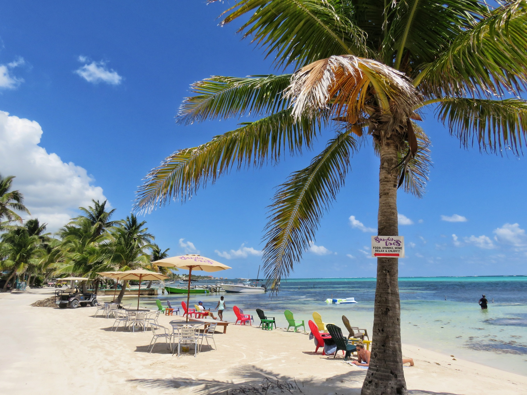 Dive Center For Sale - Successful, well established Belize official PADI Dive Center 5* TripAdvisor Rating