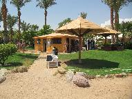 Dive Center for sale - Historical Dive center in Sharm el Sheikh  FOR SALE
