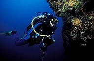 Dive Center for sale - SOLD !!!....Dive Centre in Croatia - Murter - NP Kornati , NP Krka http://www.croatia-scuba-diving.com/