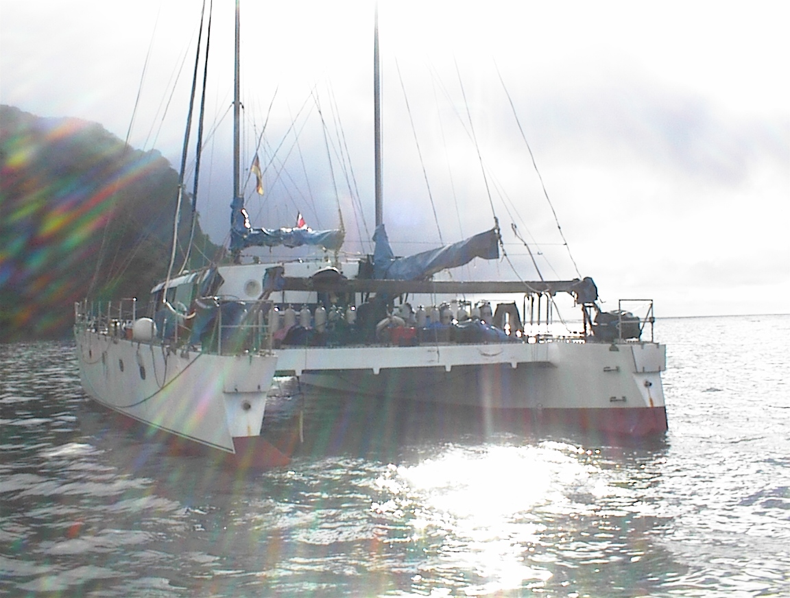 Dive Center For Sale - Dive Catamaran Liveaboard for sale