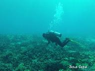 Dive Center for sale - Looking for Dive Operator to Operate in Fuga Island