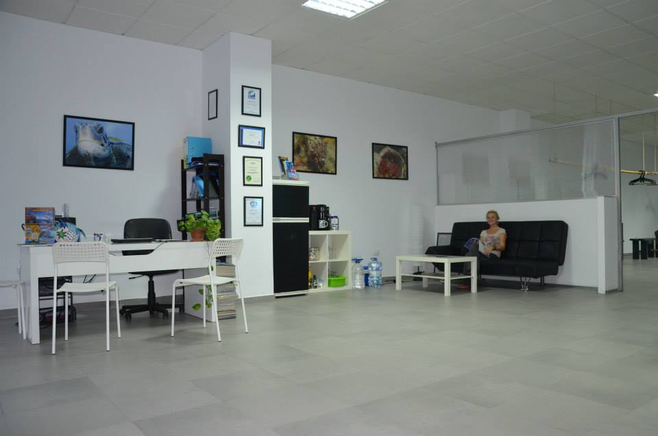 Dive Center For Sale - Successful, LEGAL Dive Center for sale in Tenerife/Canary Islands