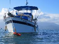 Dive Boat for sale - Private Charter Dive Boat Yacht Liveaboard