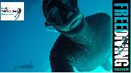 Dive Center for sale - Freediving and watersports license and Business
