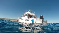 Dive Center for sale - Dive center for sale! LA PAZ, BAJA, MX