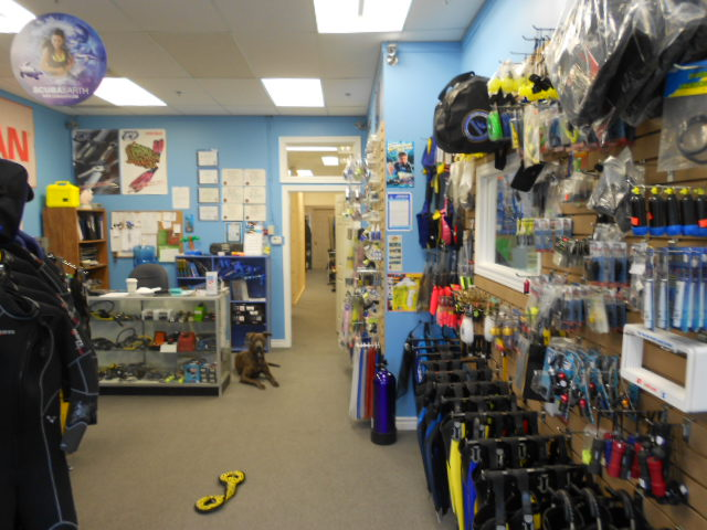 Dive Center For Sale - Busy Canadian PADI Dive Center For Sale - Reduced Price!!