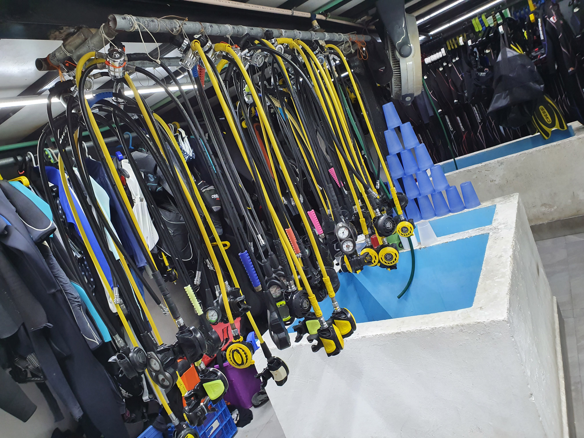 Dive Center For Sale - PADI 5-Star IDC with 30 year history. Central Playa del Carmen